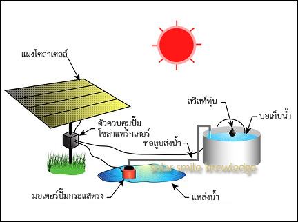 21884_Solar wintering_eng